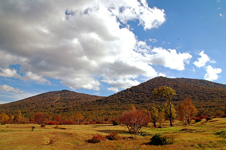 前森山と西森山